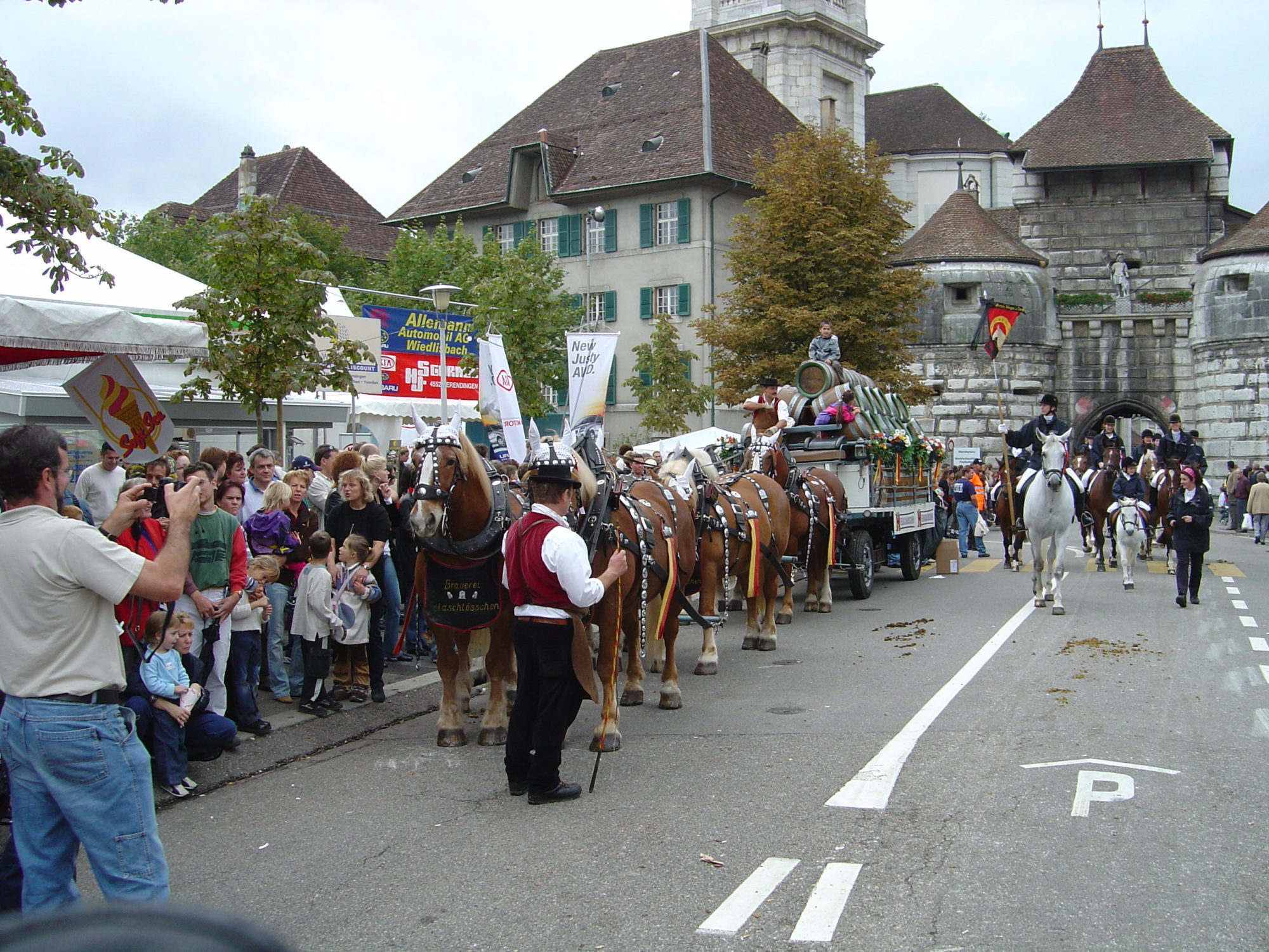 Interessengemeinschaft Pferd Grenchen Solothurn (IPGS)